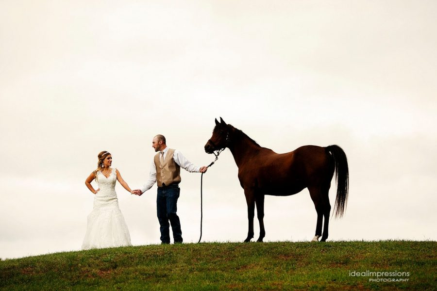 Bride and groom hold hands while groom holds on to reins of a horse | Ideal Impressions Photography