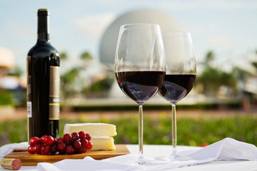 cheese plate with red wine at Epcot | CTS-Travel Services