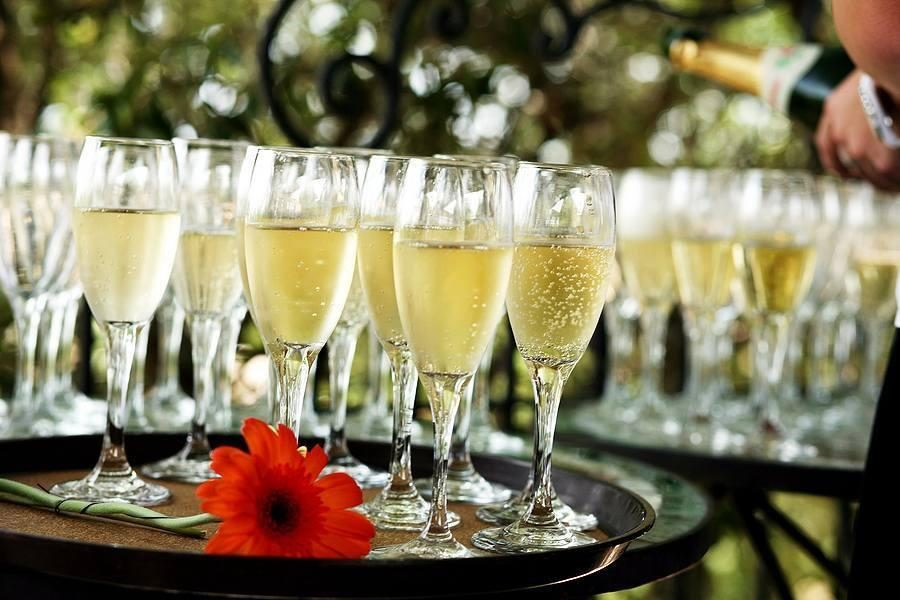 Trays of champagne accented by a single red flower