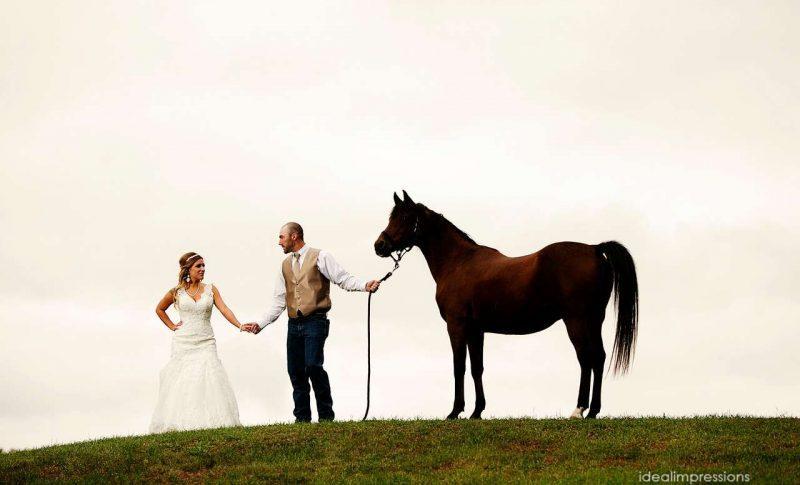 Wedding Couple holding reins of horse