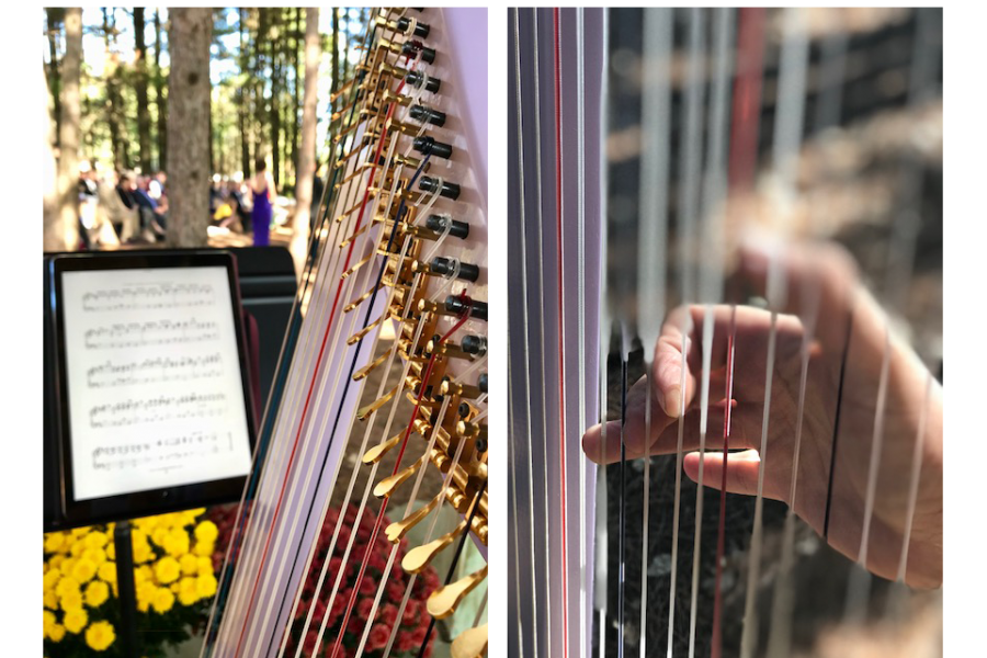 Harp Music by Gabriel's Horns