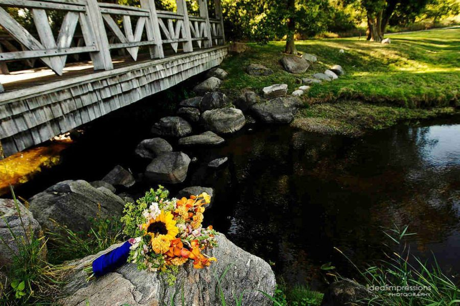 Beautiful grounds and bridge for gorgeous wedding photography at Hawks View