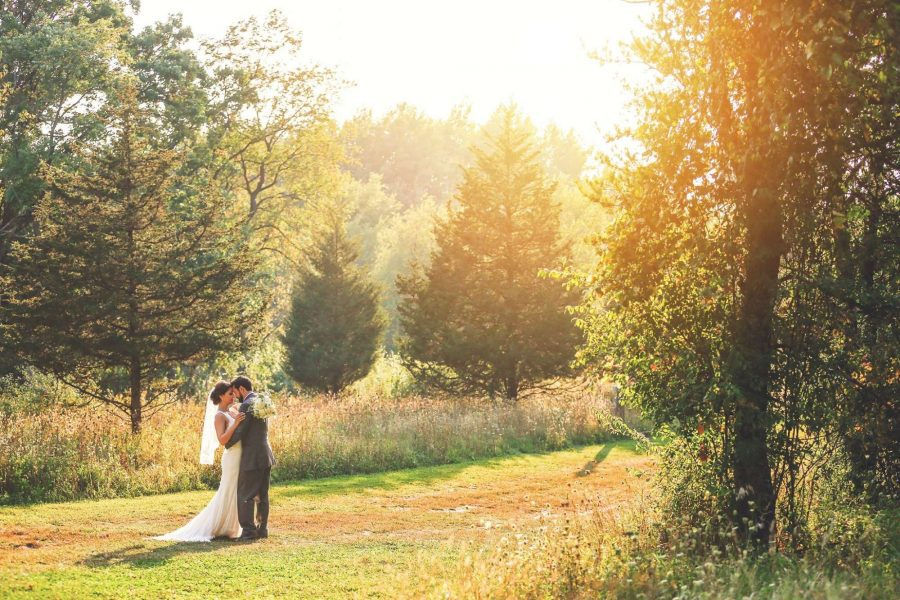 bride and groom embrace in a grassy sunlit field