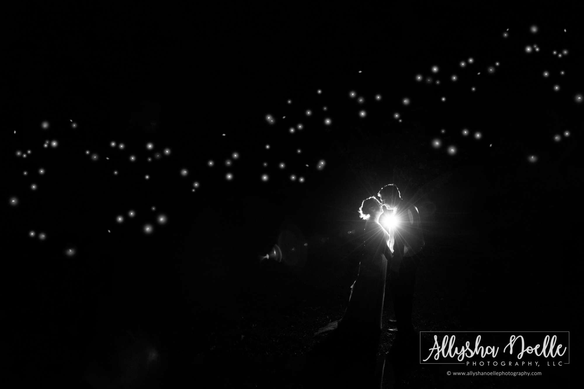 Allysha Noelle Photography