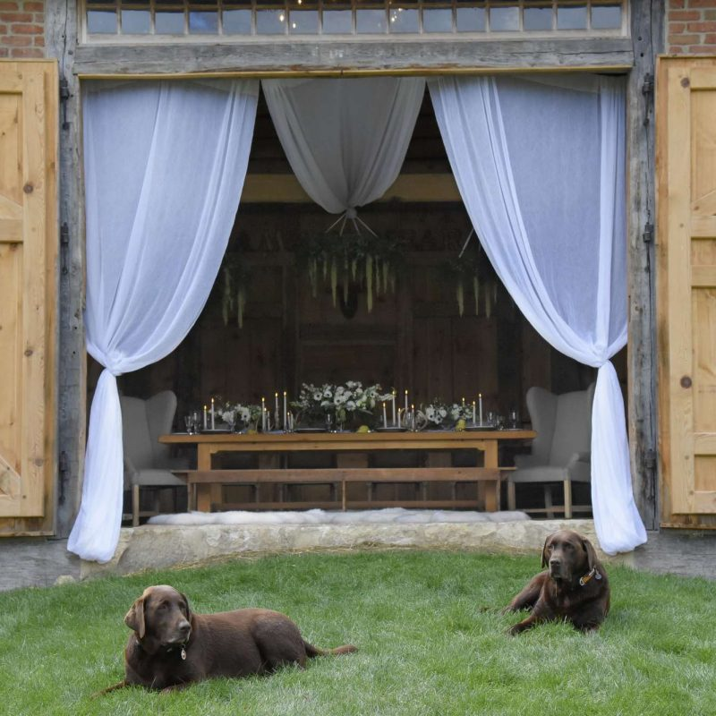 wedding-draping-farm