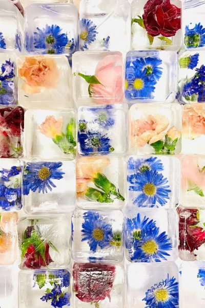 Floral craft ice from LushICE