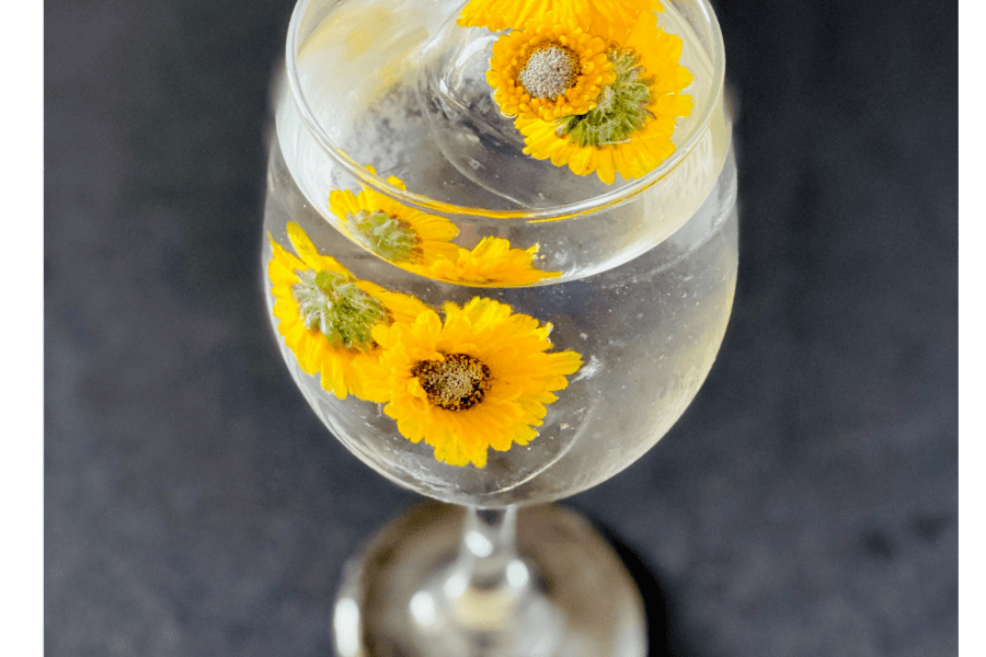 Floral ice cubes in water glass