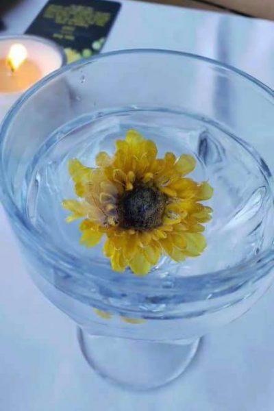 yellow flower ice
